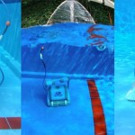 Dolphin Dynamic plus